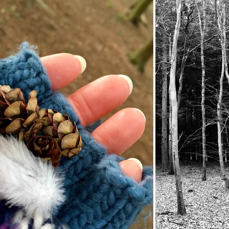 woods treasures